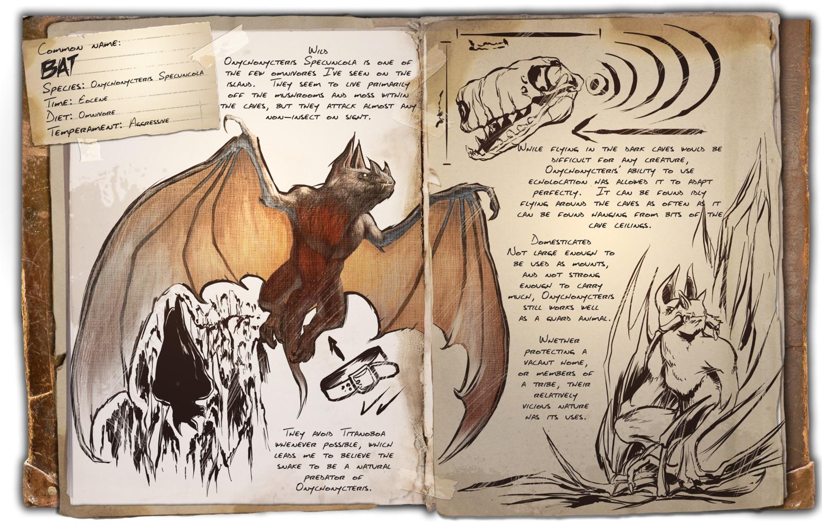 Dino Dossier: Bat