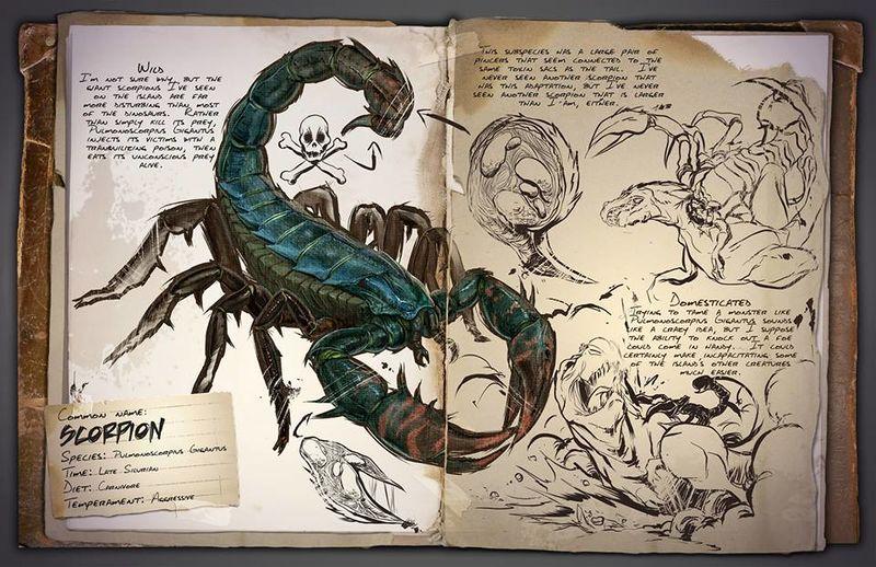 800px-Scorpion