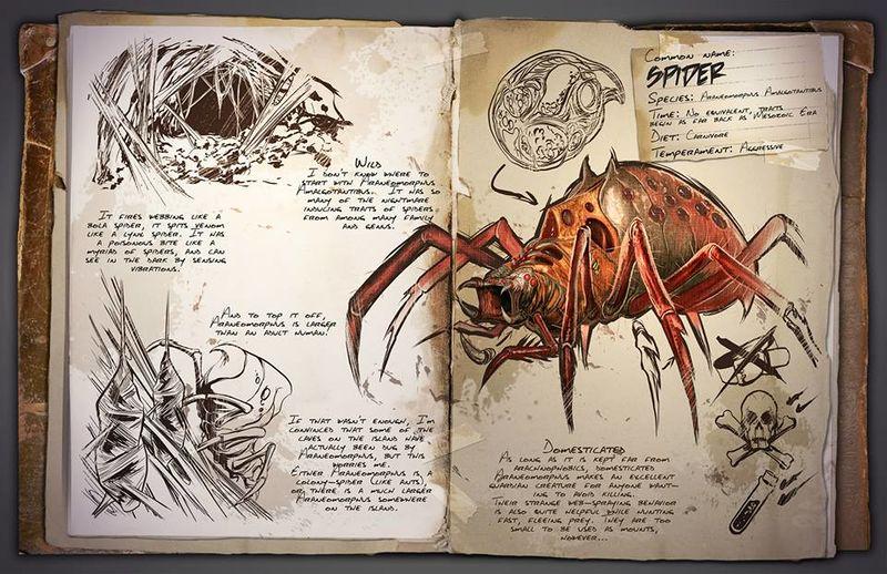 Dino Dossier: Araneomorphus – Spider