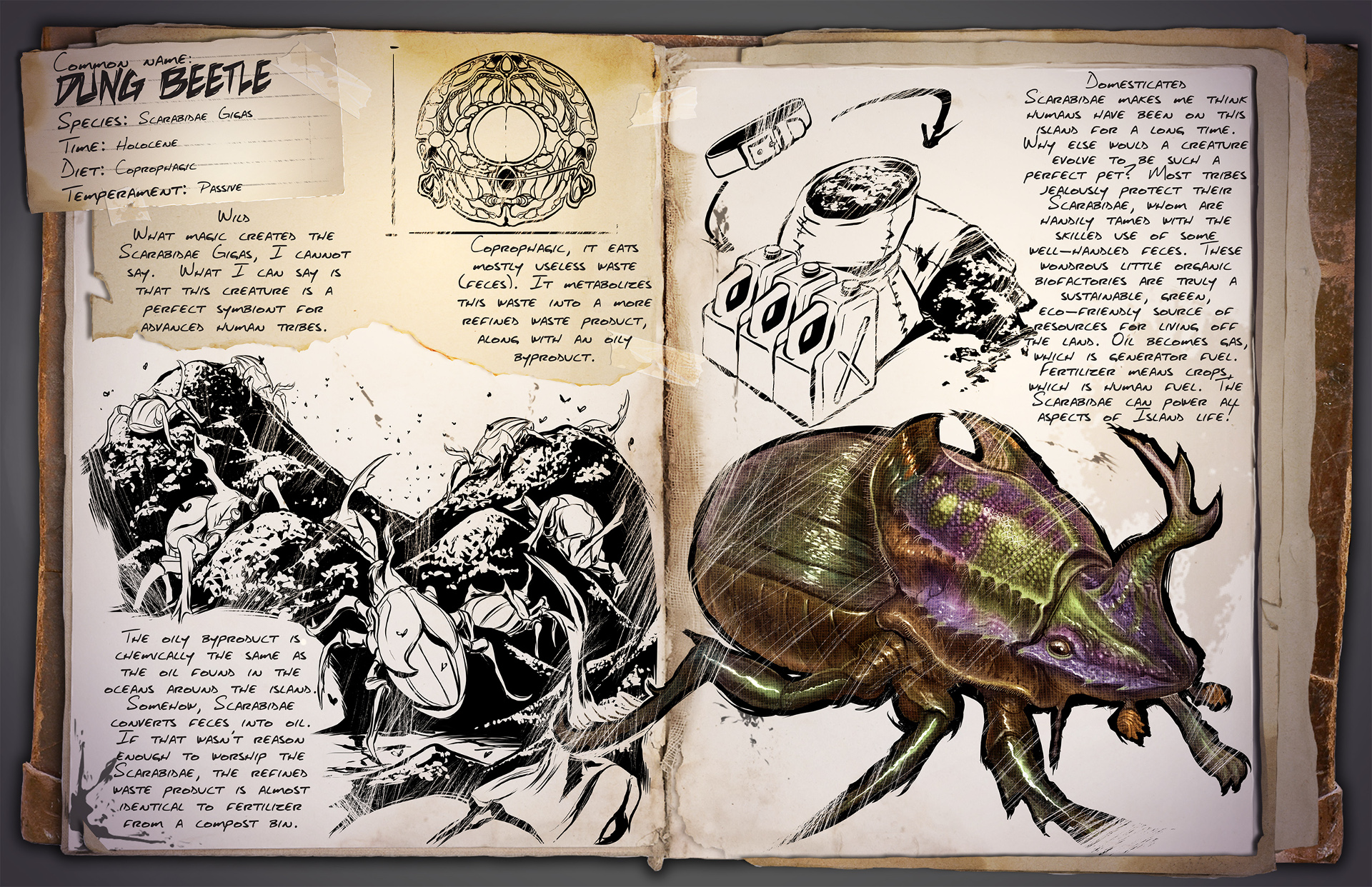 Dino Dossier: Dungbeetle