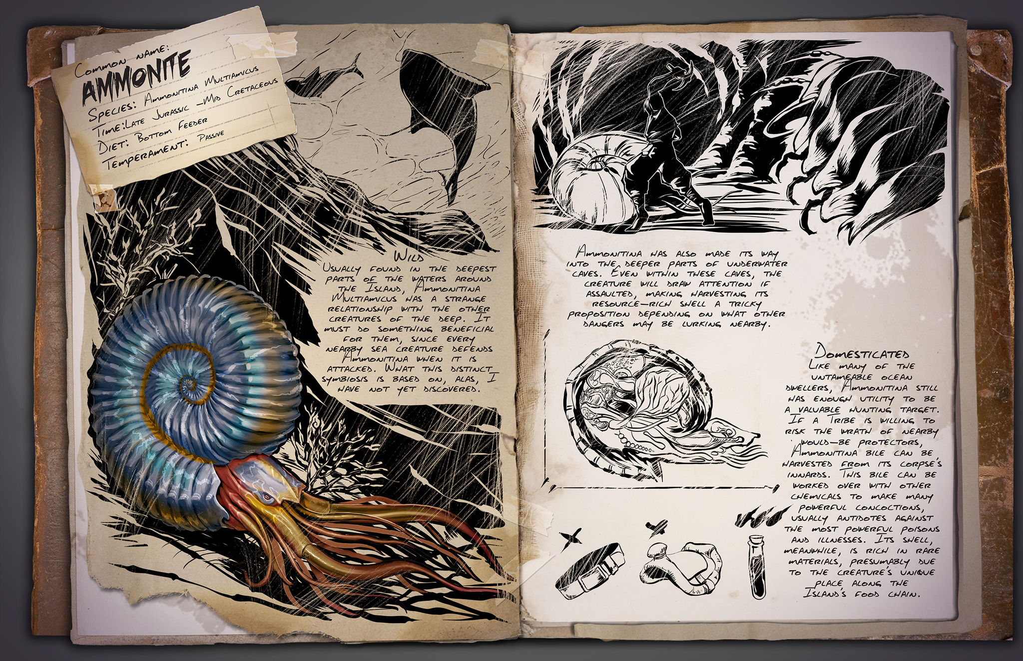 Dino Dossier: Ammonite